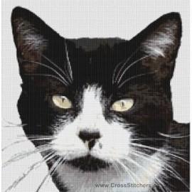 British Shorthair Cat  (Black and White)  - Cross Stitch Chart