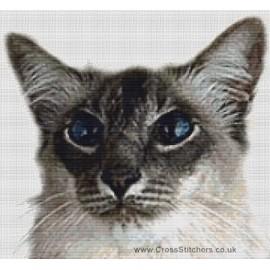 Balinese Cat (Blue Tabby Point)  - Cross Stitch Chart
