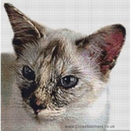 Balinese Cat (Seal Tortie Point)  - Cross Stitch Chart