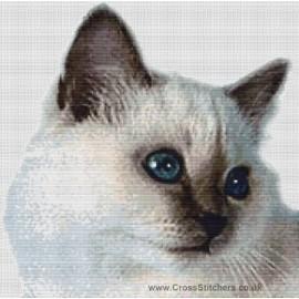 Birman Cat  (Lilac Point)  - Cross Stitch Chart