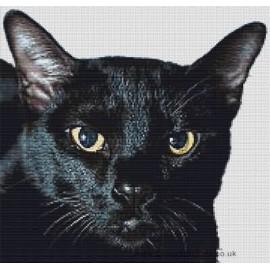 Bombay Cat - Cross Stitch Chart