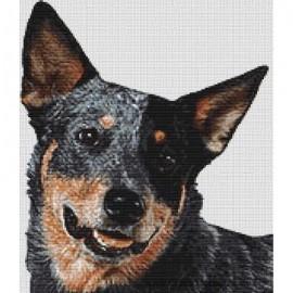 Australian Cattle Dog - Cross Stitch Chart