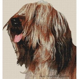 Briard - Dog Cross Stitch Chart