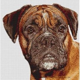 Boxer - Dog Cross Stitch Chart