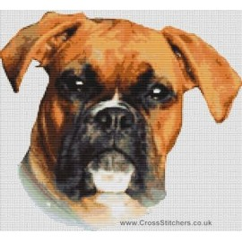 Boxer (Red and White) - Dog Cross Stitch Chart