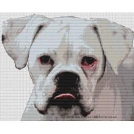 Boxer (White) - Dog Cross Stitch Chart