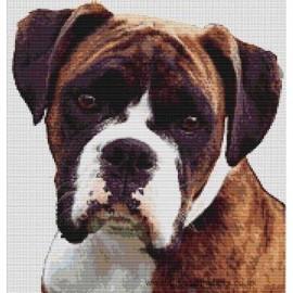 Boxer (Brindle and White) - Dog Cross Stitch Chart