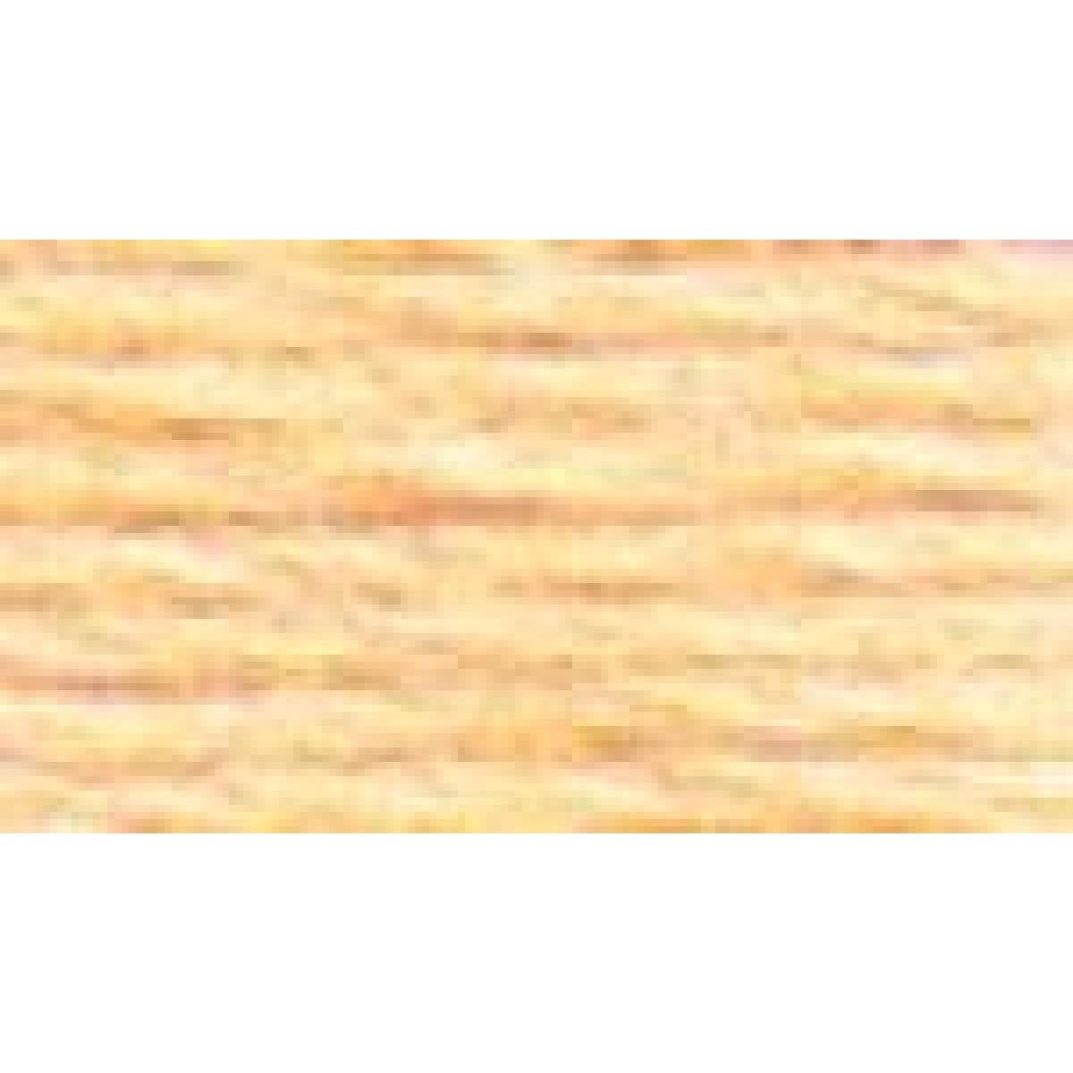 DMC Stranded Cotton Number 3844