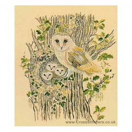 Barn Owls Embroidery Kit from Design Perfection